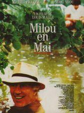 Milou_en_mai
